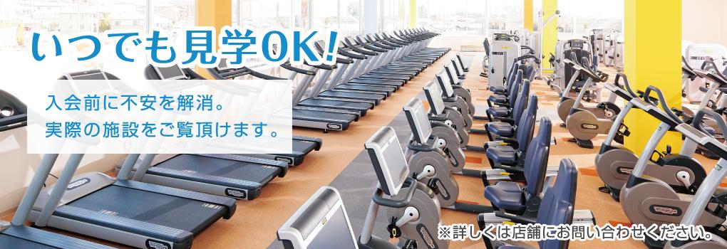 ホリデイ スポーツ クラブ 京都
